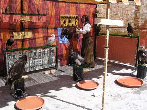 Mercado Medieval en Estepona