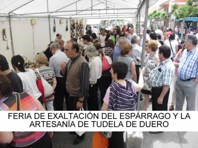 BASES PARA LA PARTICIPACION EN LA XXXV FERIA DE EXALTACION DEL ESPÁRRAGO Y LA ARTESANÍA DE TUDELA DE DUERO
